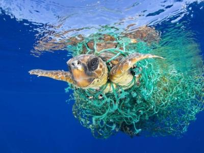 Ropa sostenible para salvar los océanos
